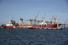 开普敦南非港  免版税库存图片