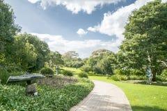 开普敦植物园 免版税库存照片