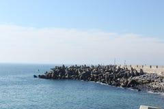 从开普敦江边的海景 免版税库存照片