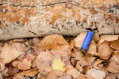 开枪在从狩猎期的地面上的壳 库存照片