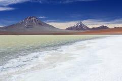 离开湖拉古纳乐家, Altiplano,智利 免版税图库摄影
