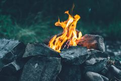 开火,火焰,烧木柴,烤肉串的, f煤炭 库存照片