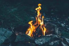 开火,火焰,烧木柴,烤肉串的, f煤炭 免版税库存照片