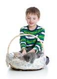 开玩笑有在空白背景查出的小猫的男孩 免版税库存照片