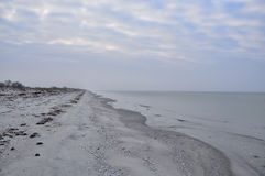 离开的沙滩秋天 灰色50片树荫  库存图片