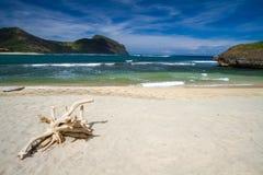 离开的海滩 库存图片