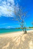 离开的热带海滩在巴厘岛 库存图片