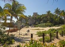 离开的玛雅海滩在Tulum考古学区域,墨西哥 免版税库存照片