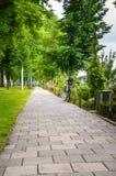 离开的石道路标示用树 免版税库存照片