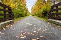 离开的被铺的道路和多云天空 免版税库存图片