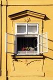 开窗口在布拉格,捷克老镇  免版税图库摄影