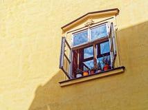 开窗口外面反对与花的黄色墙壁背景在罐 库存图片