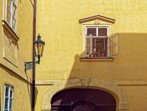 开窗口外面反对与花的黄色墙壁背景在罐 库存照片
