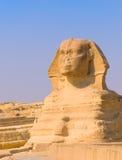 开罗吉萨棉金字塔狮身人面象 库存照片