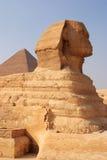 开罗埃及吉萨棉狮身人面象 免版税库存图片