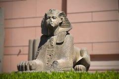 开罗埃及吉萨棉狮身人面象 库存图片