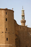 开罗埃及清真寺 免版税图库摄影