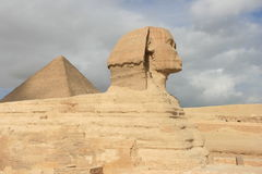 开罗埃及狮身人面象 免版税库存照片