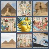 开罗埃及狮身人面象 库存照片