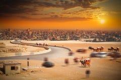 开罗埃及 大城市在非洲 免版税库存照片