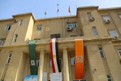 开罗大学 库存图片