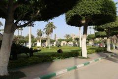 开罗大学 免版税图库摄影
