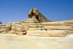 开罗极大的狮身人面象 免版税库存图片