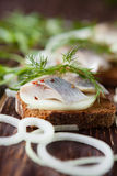 开胃三明治用用卤汁泡的鲱鱼 免版税库存图片