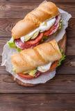 开胃三明治用香肠,菜 图库摄影