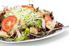 开胃健康沙拉 库存图片