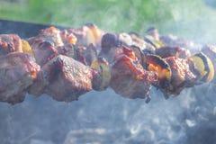 开胃切片在格栅的烤肉在煤炭 免版税库存图片