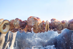 开胃切片在格栅的烤肉在煤炭 免版税库存照片