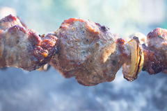 开胃切片在格栅的烤肉在煤炭 免版税图库摄影