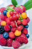 开胃可口成熟水多的莓果 免版税图库摄影