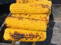 开胃可口玉米在野餐烤了户外 库存照片