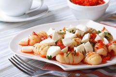 开胃土豆尼奥基用西红柿酱和无盐干酪 库存照片