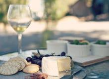 开胃小菜包括乳酪和酒 免版税库存照片