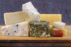 开胃小菜干酪种类 图库摄影