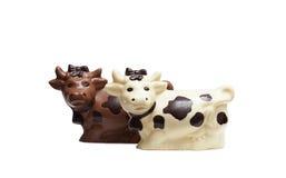 开胃巧克力母牛的图象,特写镜头 免版税库存图片
