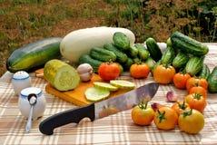 开胃快餐蔬菜 免版税库存图片