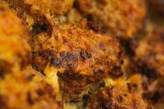 开胃手工制造烘烤鱼圆用乳酪 库存图片