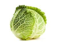 开胃新鲜的圆白菜。 免版税库存图片