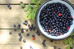 开胃新鲜的森林莓果 图库摄影