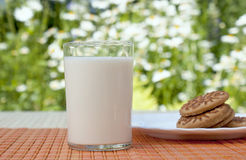 开胃新鲜的玻璃牛奶 免版税库存照片