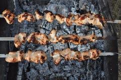开胃新鲜的肉烤肉串露天 免版税库存图片