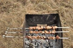 开胃新鲜的肉烤肉串露天 库存照片