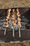 开胃新鲜的肉烤肉串露天 库存图片