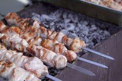 开胃新鲜的肉烤肉串 免版税库存图片