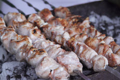 开胃新鲜的肉烤肉串 库存照片
