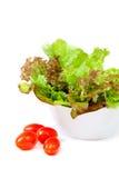 开胃新鲜的蔬菜沙拉 库存照片